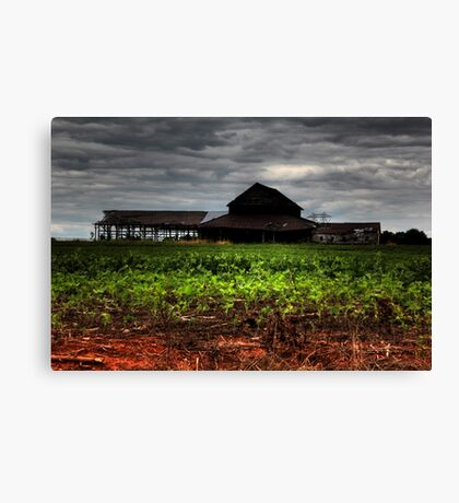 Lost Farm Canvas Print