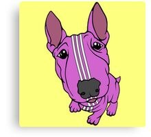 Sporty Bull Terrier Pink and White Canvas Print