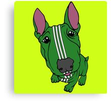 Sporty Bull Terrier Green and White Canvas Print