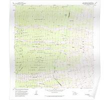 USGS TOPO Map Hawaii HI Puu Pohakuloa 349724 1982 24000 Poster
