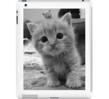 Sooooo Cute iPad Case/Skin