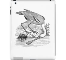 Vintage Roseate Spoonbill Bird Illustration Retro 1800s Black and White Birds Image iPad Case/Skin
