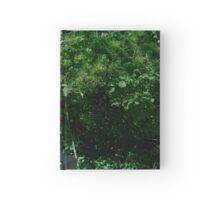 Guard Lion Hardcover Journal