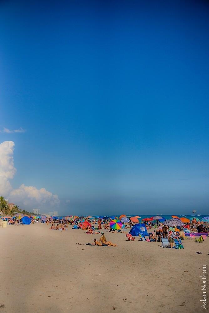 Beautiful Beach, Big Sky by anorth7
