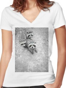 Which One Is The Cutest? Women's Fitted V-Neck T-Shirt
