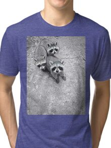 Which One Is The Cutest? Tri-blend T-Shirt