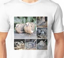 A COLLAGE OF MOURNING DOVES BORN IN MARCH Unisex T-Shirt