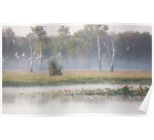 Dawn in Kakadu National Park  Poster
