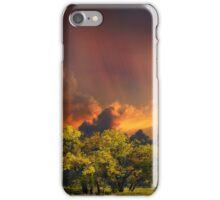 4007 iPhone Case/Skin