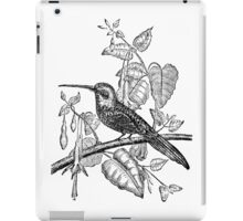 Vintage Tailed Jacamar Bird Illustration Retro 1800s Black and White Image iPad Case/Skin