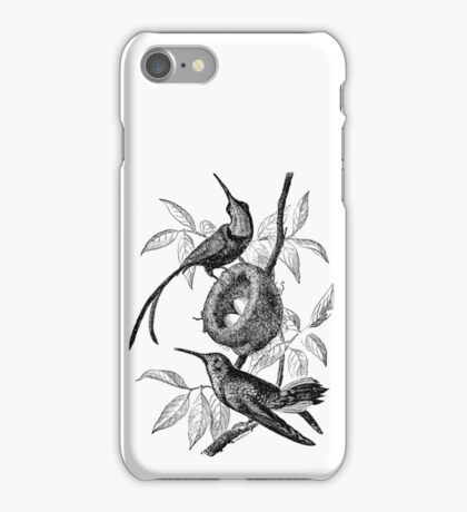 Vintage Hummingbird Bird Nest Illustration Retro 1800s Black and White Hummingbirds Birds Nests with Eggs Image iPhone Case/Skin