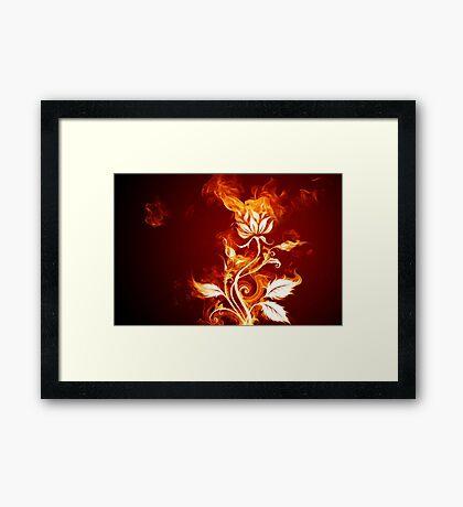 Fire Flower Framed Print