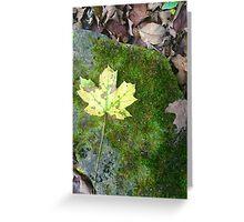 mossy yellow leaf Greeting Card