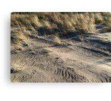 sand dune grass Canvas Print