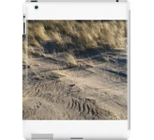 sand dune grass iPad Case/Skin