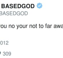 Lil B Tweet - bees and water Sticker