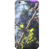Forest glimmer iPhone Case/Skin