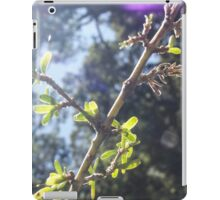 Forest glimmer iPad Case/Skin