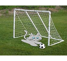 A Cat Plays Goalie In Back Yard Photographic Print