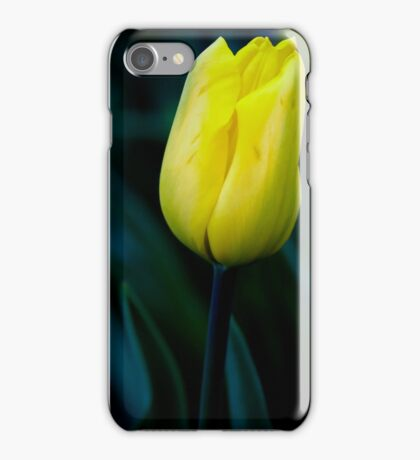 Once Upon A Midnight Bloom  iPhone Case/Skin
