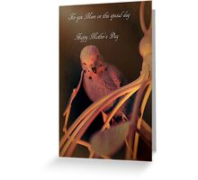 Bird on a Cage Mother's Day Card Postcard Greeting Card