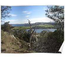 View from Brady's Lookout Poster