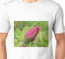 Rose Bud Unisex T-Shirt