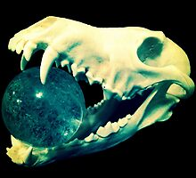 Jaws of Life by UnChienAndalou