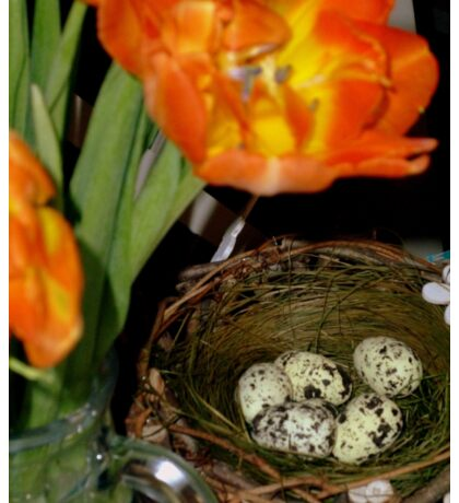 HAPPY EASTER ! - Easter Nest with Eggs and orange Tulips Sticker