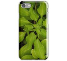 Green Mood iPhone Case/Skin