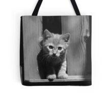 Flannel The Cat Tote Bag