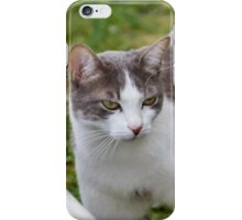 cute cat iPhone Case/Skin
