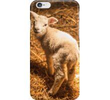 Little lamb 2 iPhone Case/Skin