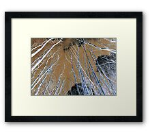 Inverted forest Framed Print