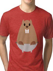 GROUNDHOG & SHADOW Tri-blend T-Shirt