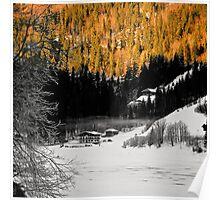 Alpine valley in winter Poster