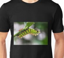 Rothschildia Caterpillar Unisex T-Shirt