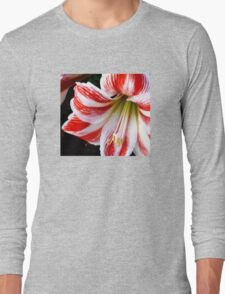 Gorgeous Lily - Red-and-Withe-Striped  Long Sleeve T-Shirt