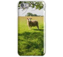 Watching Ewe iPhone Case/Skin