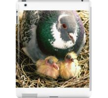 Parent pigeon and hatchlings  iPad Case/Skin