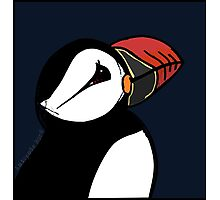 The Puffin's Dream  Photographic Print