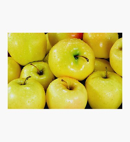 Yellow apples Photographic Print