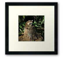 """""""It's A Perfect Fit!"""" Framed Print"""