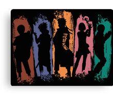 Shadow of Ninja Canvas Print