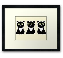 White Bibbed Black Cats Framed Print