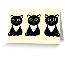 White Bibbed Black Cats Greeting Card