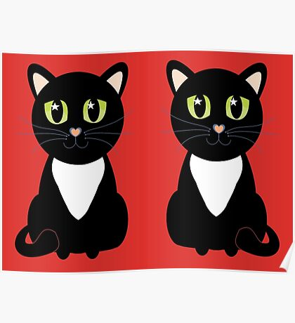 Two Black and White Cats Poster