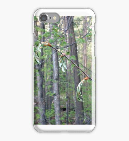 Beech Buds iPhone Case/Skin