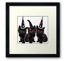 Cute Kittens Framed Print