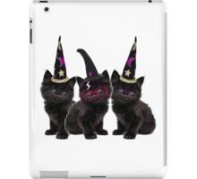 Cute Kittens iPad Case/Skin